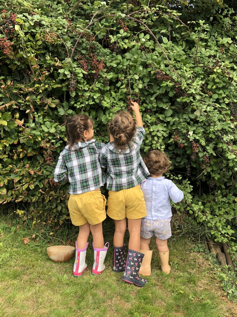 blackberry picking . an activity for all the family to enjoy . www.thebabycloset.ie